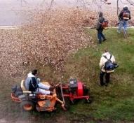 Fall Leaf Cleanup & Leaf Disposal