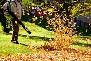landscape-maintenance-leaf-blowing