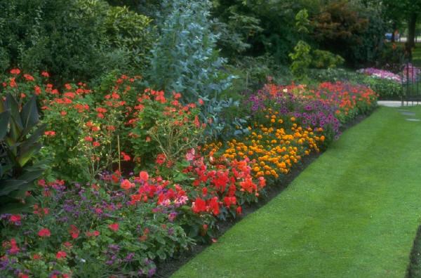 plant-bedding-area