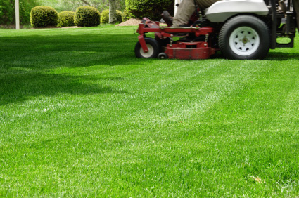 Lawn Care ServiceLawn MowingLawn Mowing Turf Maintenance