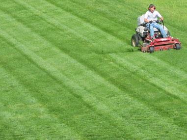 large-lawn-mowing-jpg