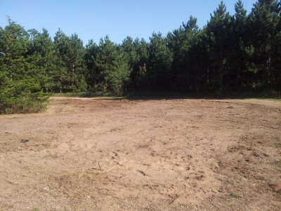 tree-clearing-lot-preparation