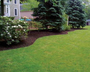 residential landscape edging