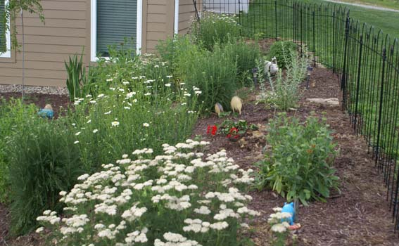 weeded-flower-bed